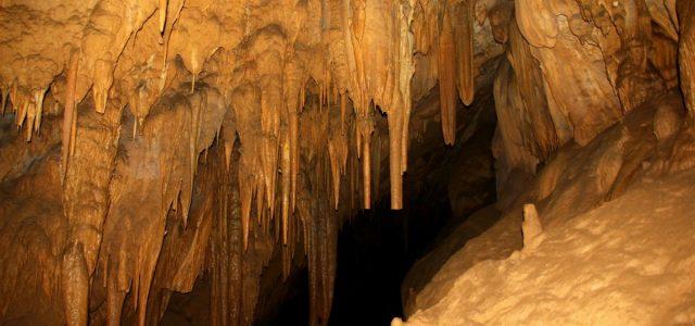 Podróż w głąb Ziemi śladami Humbolda czyli Cueva de los Guácharos
