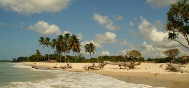 Gezaulole czyli czas dzikich plaż