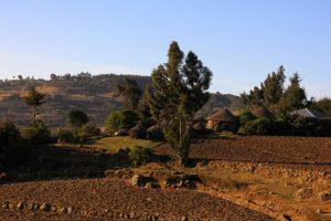 Płaskowyż Guassa. Etiopskie Shangri-La
