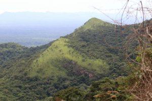 Rejon Volta. Góry i małpy